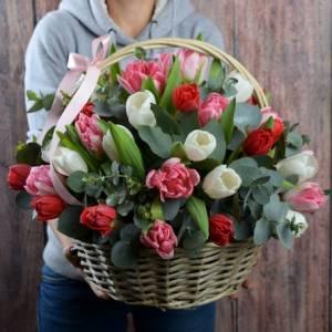 Корзина 31 разноцветный крупный тюльпан R988